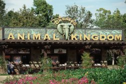 disney_animal_kingdom